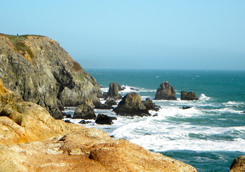 bodega bay coastline