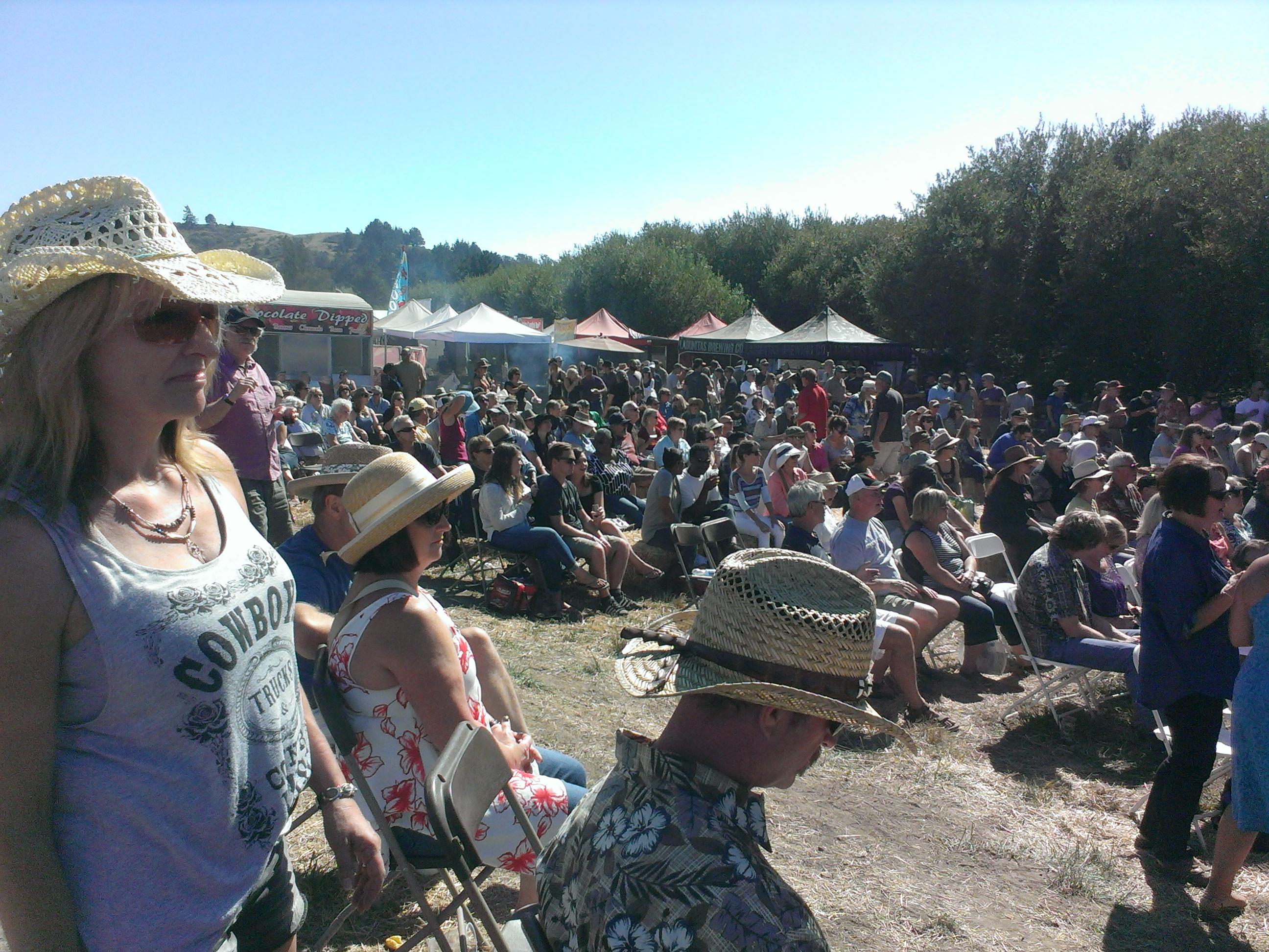 crowd 2016